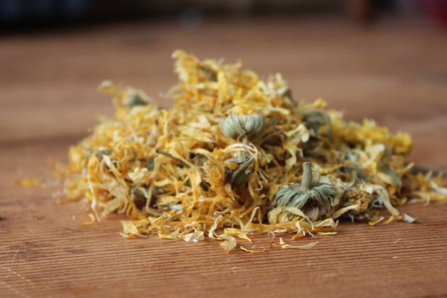 Organic Calendula Flowers - They are one of my most powerful ingredients