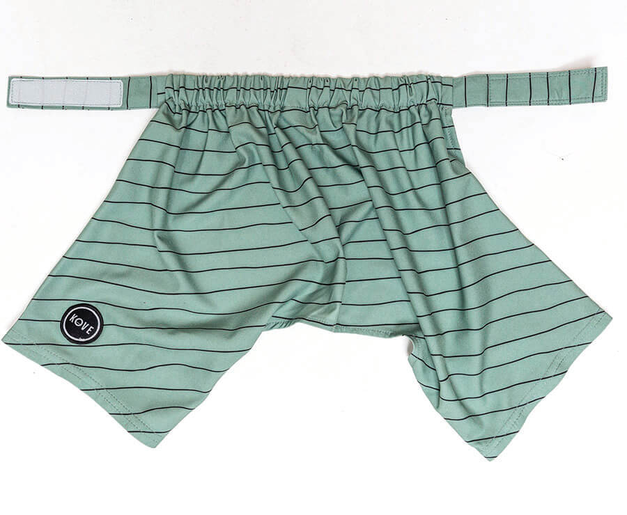 Mate Dog Swim Trunks Sage