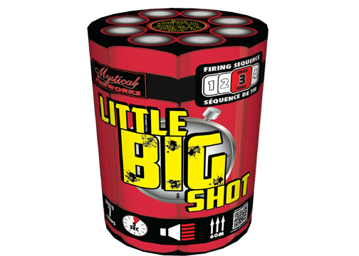 Little BIG Shot