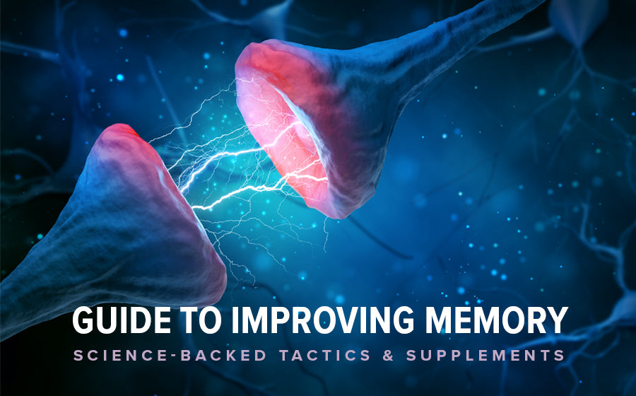 Guide to Improving Memory Retention & Recall: Science-Backed Tactics & Supplements