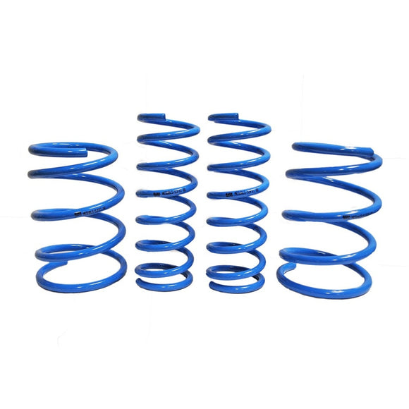 Mann Engineering Lowering Springs (Pre-Order)