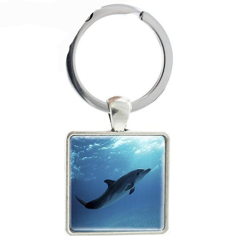 Dolphin Square Keychain Silver Alloy Ring