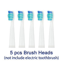 Sonic Electric & Timer Toothbrush USB Rechargeable with 3 Replacement Heads