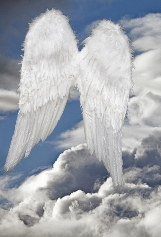 Flying Angel Wings Photography Background