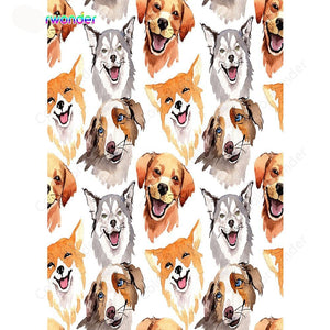 Colorwonder Dog Photography Backdrop