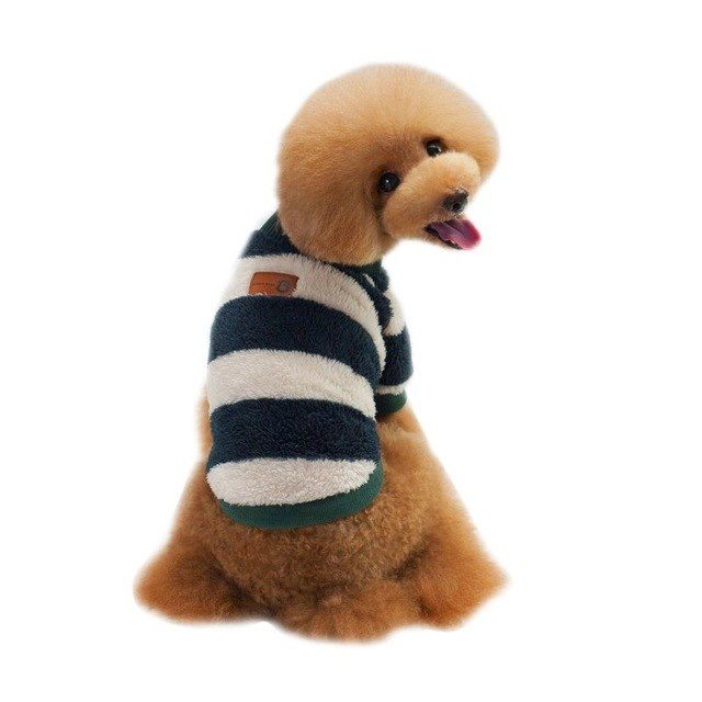 Winter Striped Sweater - PawClothes