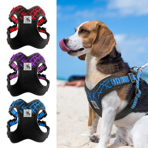 No-pull Body Harness - PawClothes