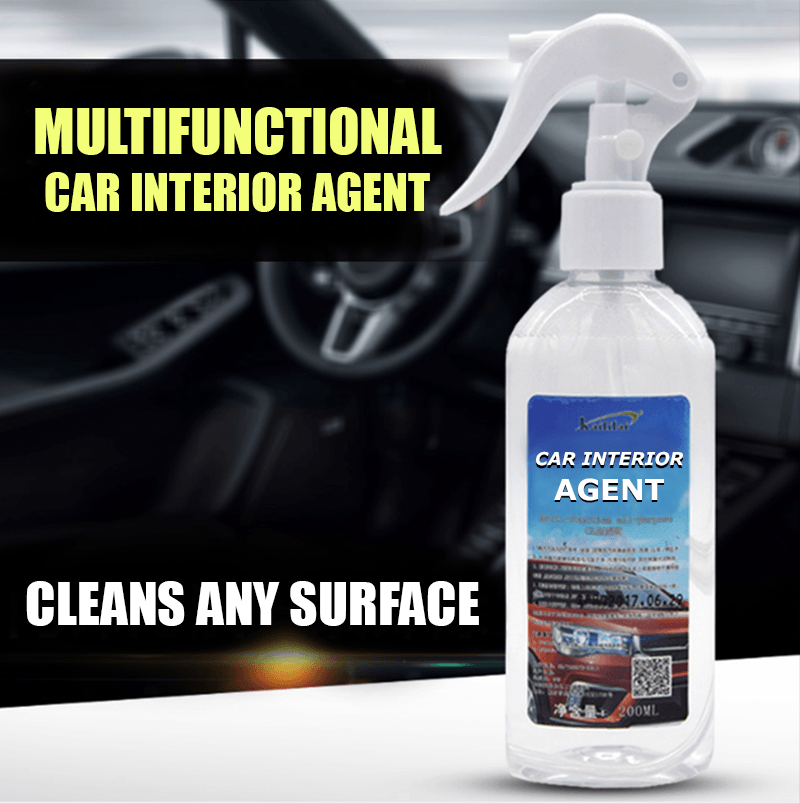 Multi-functional Car Interior Agent