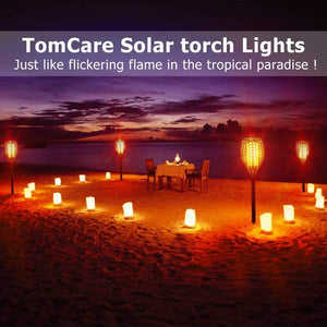 Solar Torch Light