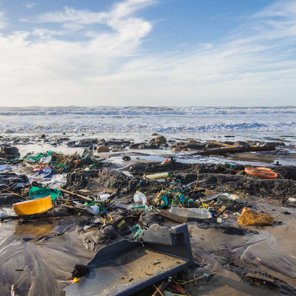 14 Shocking Facts about Ocean Pollution