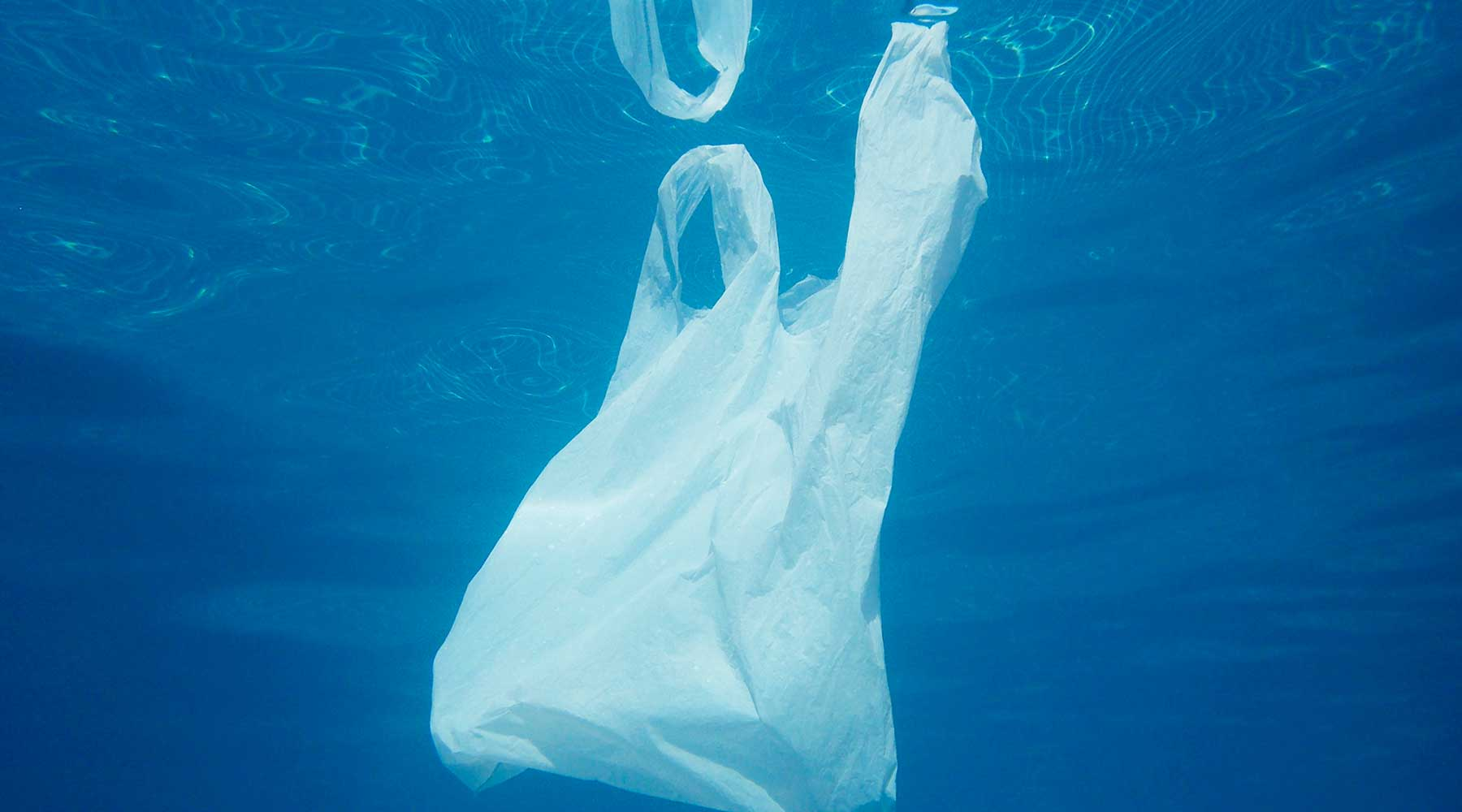 Guide on How to Recycle Plastic Bags