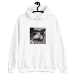 Confused Screeching Hoodie