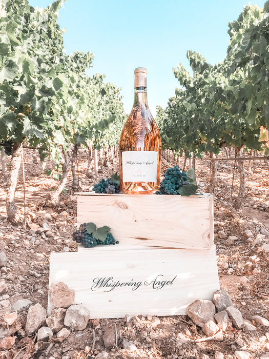 Whispering Angel Rosé 2020 - First UK Release