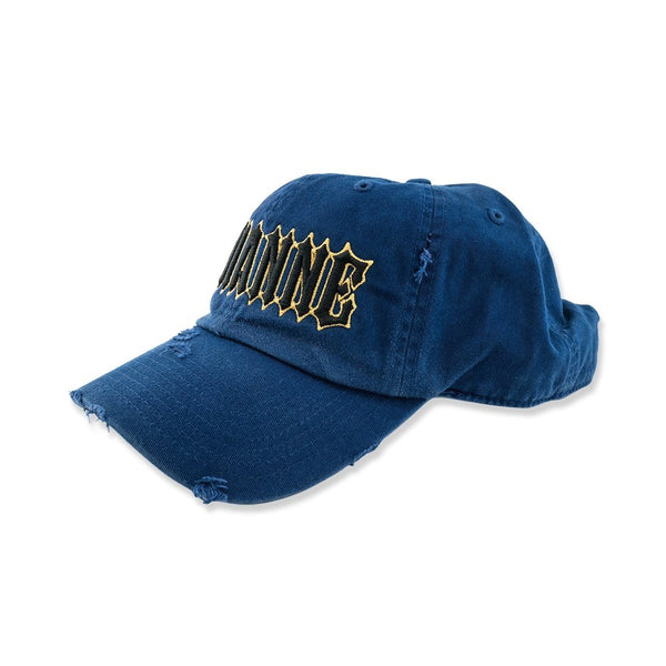 Avianne Blue Distressed Cap