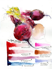 How to paint a Beetroot