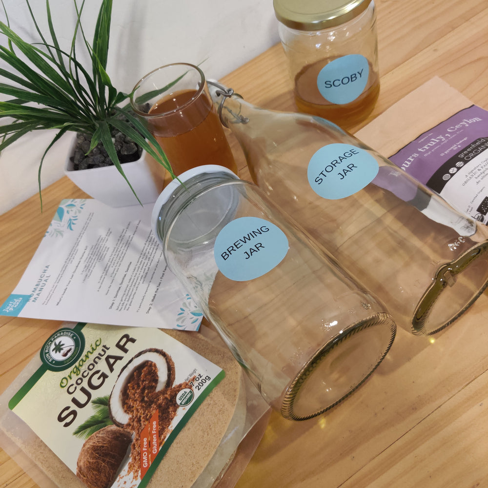 DIY Kombucha Kit