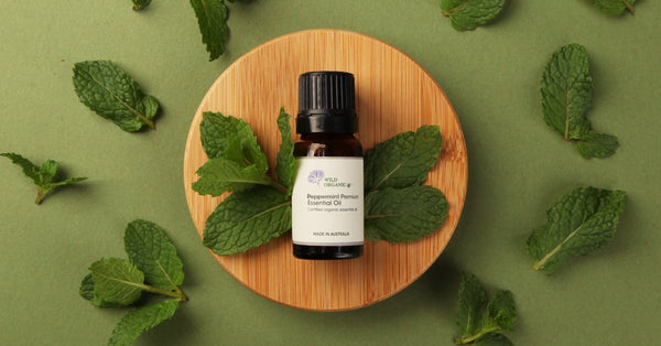 A multi-purpose helper you must have - Peppermint Premium - Wild Organic