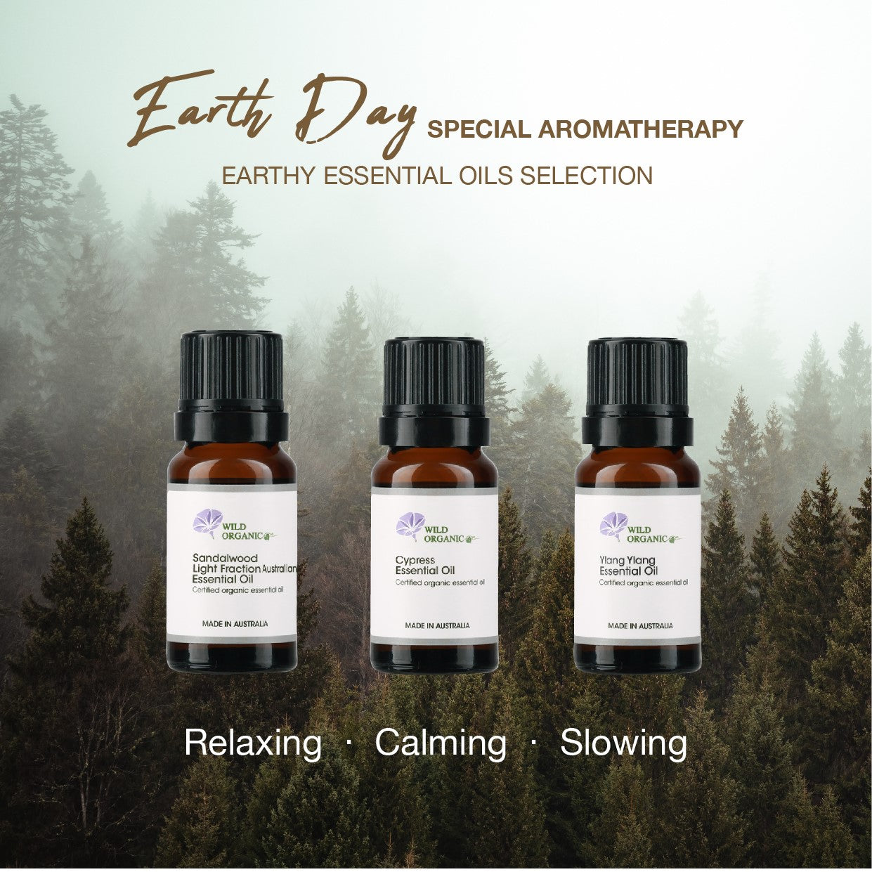 Organic Essential Oil (Earthy) - Buy 2 get 12% off