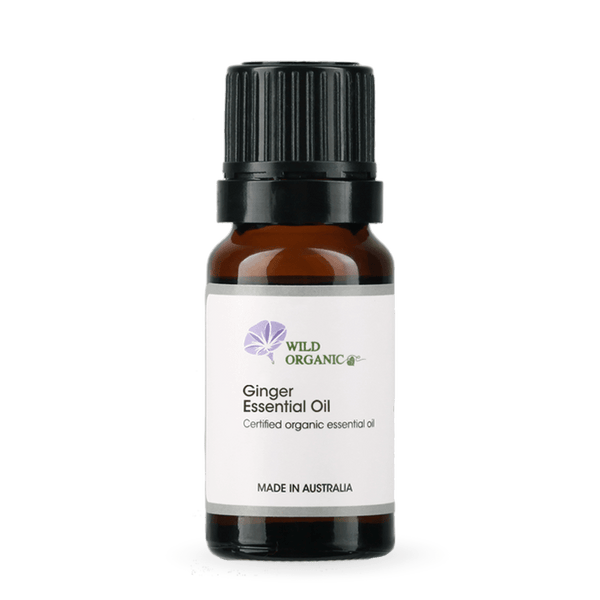 Ginger Essential Oil - Wild Organic