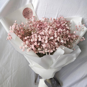 Pink Baby Breath
