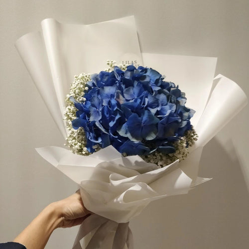 Hydrangeas and Baby Breath Bouquet, top favorite bouquet for giving colleague a friendly gift. Top bouquet gift for office colleague.