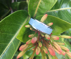 Amazonite Hawaii Titanium Ring®