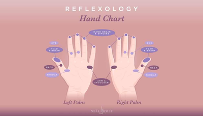 Relaxology: An everyday guide to quick relaxation from Elysian