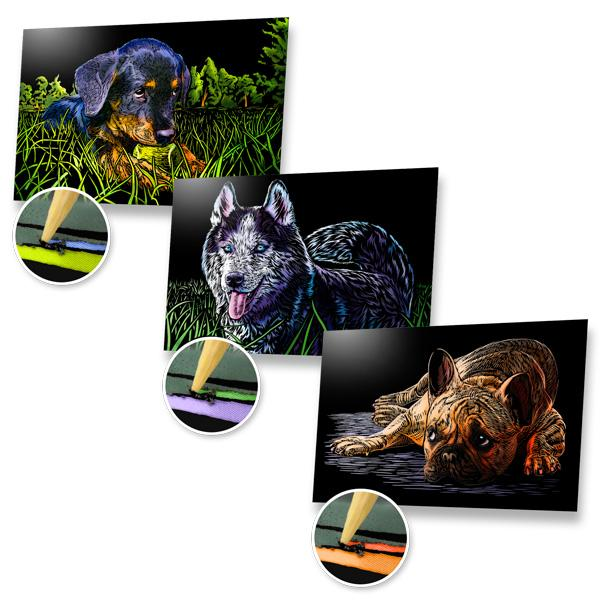 Dogs Scratch Painting Bundle