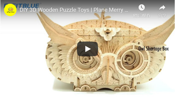 DIY 3D Wooden Puzzle Toys | Plane Merry Go Round Puzzle | Ferris Wheel Puzzle | Pencil Box Puzzle | Eiffel Tower Puzzle Toys | Assembly Model Toys | for Children Kids Gifts