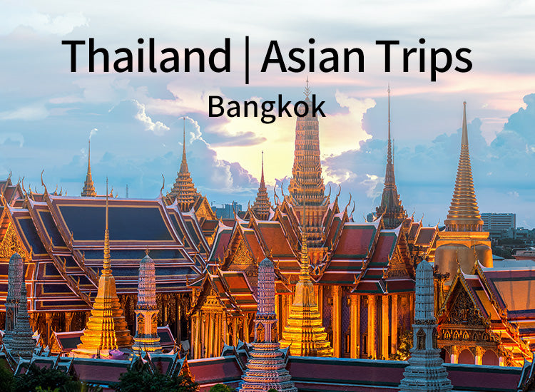 Full day Bangkok City Tour (BDN024)