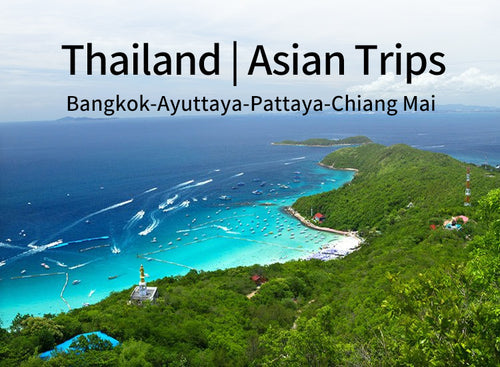 12 Days 11 Nights Bangkok+Ayuttaya+Pattaya+Chiang Mai Thailand Tour(CL-BKPA8+ CL-CM5)(Minimum 2 person)
