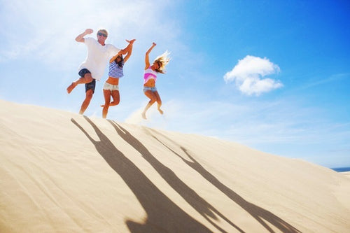 Port Stephens Day Tour with Dolphin Watching, Sandboarding & Australia Wildlife