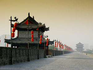Amazing Xi'an Museum One Day Tour (Including Hotel Pick Up & Off, Meals) (XA-B)