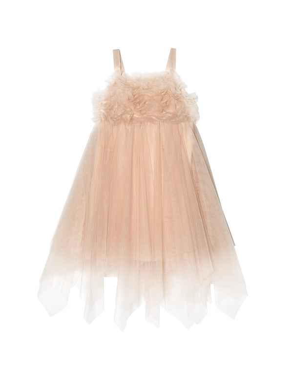 Chantilly Tulle Dress