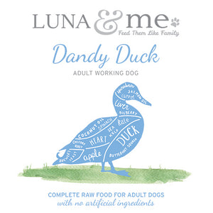Adult Dandy Duck Mince
