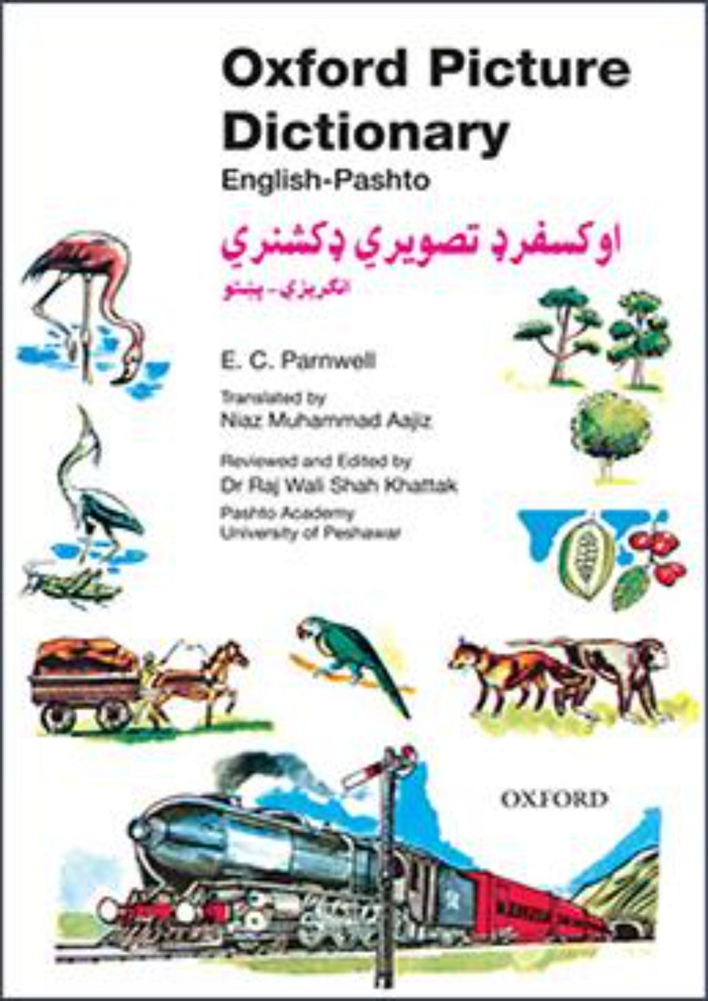 Oxford Picture Dictionary English-Pashto