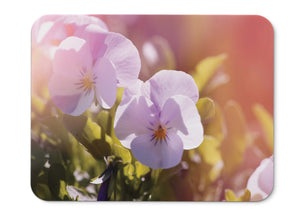 Mouse Pad Pansy Flowers Garden Hd  - 21.5 X 27 X 0.3cm
