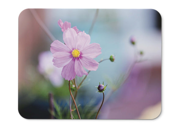 Mouse Pad Pasqueflower Purple Flowers - 21.5 X 27 X 0.3cm