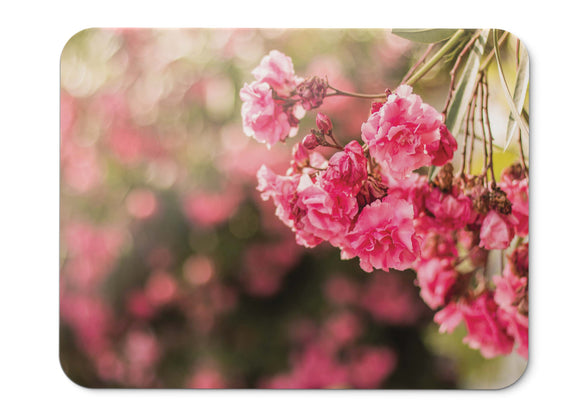 Mouse Pad Pink Flowers Flora Macro Hd - 21.5 X 27 X 0.3cm