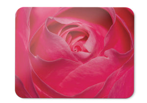 Mouse Pad Pink Rose Rose Flower Pink Closeup Hd  - 21.5 X 27 X 0.3cm