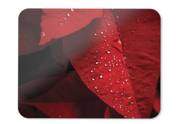 Mouse Pad Poinsettia Red Leaves Rain Droplets Hd  - 21.5 X 27 X 0.3cm