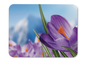Mouse Pad Purple Crocuses Purple Flowers Spring - 21.5 X 27 X 0.3cm