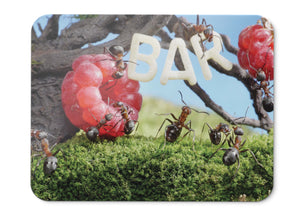Mouse Pad Raspberries Ants Insects Hd  - 21.5 X 27 X 0.3cm