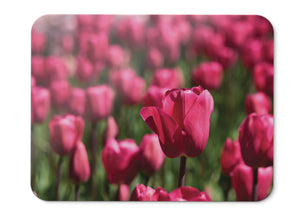 Mouse Pad Red Tulips Blossom Bloom Hd - 21.5 X 27 X 0.3cm