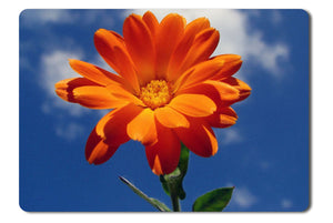 Mouse Pad Orange Flower In The Sky - 21.5 X 27 X 0.3cm