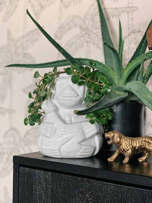 Crazy monkey pot