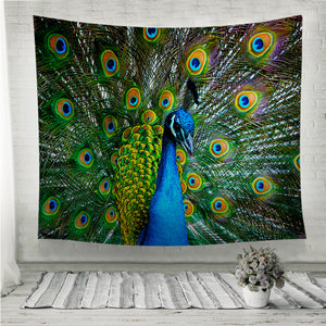 Peacock showing off Wall Tapestry