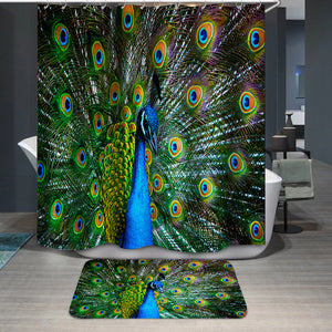Peacock showing off Shower Curtain
