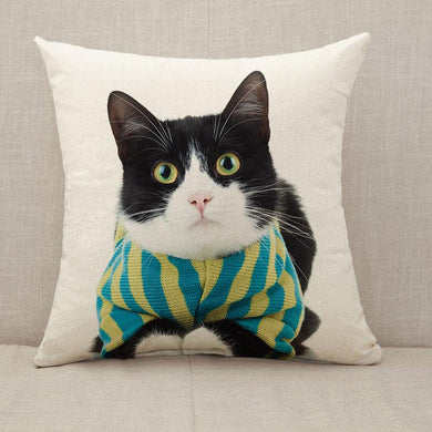 Black and white cat wearing clothes eye contact Throw Pillow [With Inserts]