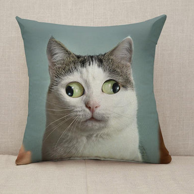 Funny cat at ophtalmologist appointmet Throw Pillow [With Inserts]